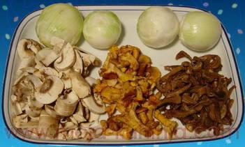Gljive u senf umaku  gljive