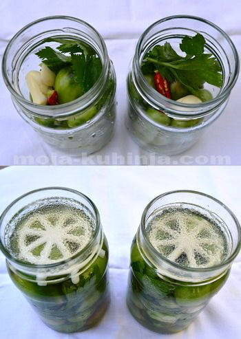 Ukiseljene zelene rajčice kiseljenje