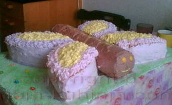 Torta leptir
