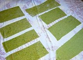 Zelena tjestenina